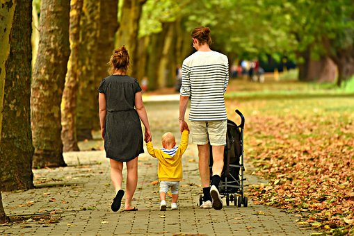 What You Need To Know About Family Tree
